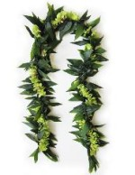 Maile Style Ti Leaf and Green Orchid Lei