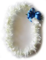 Single white orchid lei with ribbon choice