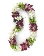 mixed double orchid lei
