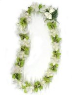 single strand green and white orchid lei