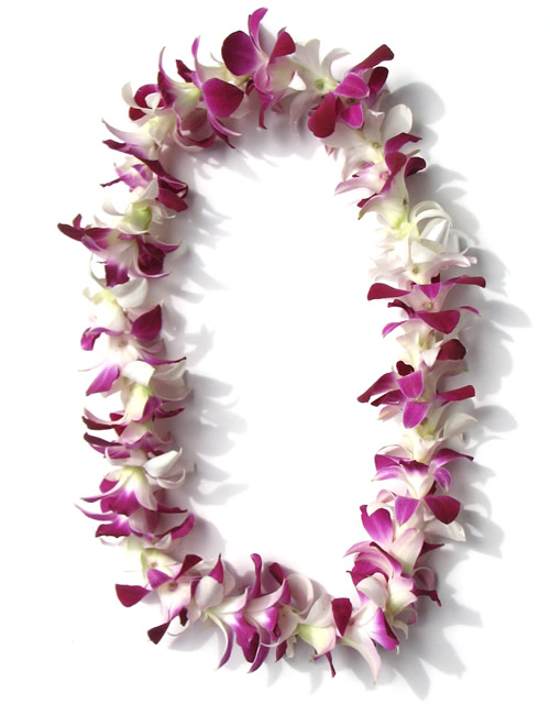 single strand white and purple lei