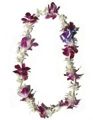 Single Strand Tuberose and Orchids